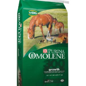 Purina-Omolene-300-Growth