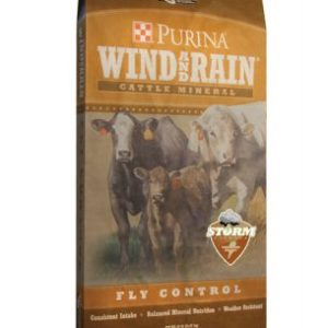 WindRain_STORM_flycontrol_BAG_medium