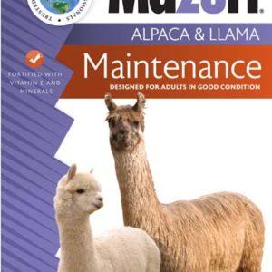 Llama Alpaca Maintenance 15x6x35_WP