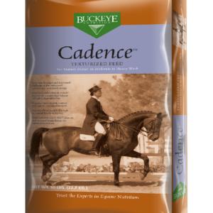 cadence_texturized_3d-right